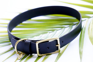Medium Waterproof Buckle Collar