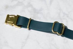 "3/4"" Side Release Buckle Collar"