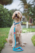 High Tide Traditional Rope Leash