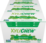 Xylichew - Spearmint 24 Pack Case