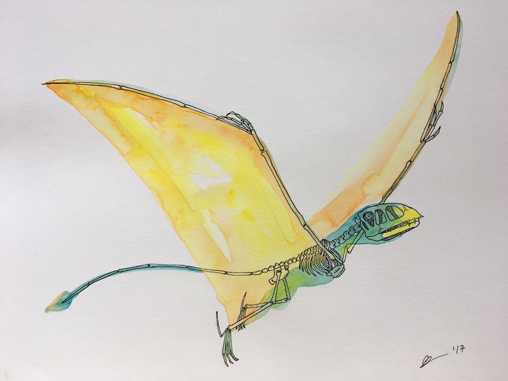 Dimorphodon Watercolor Original
