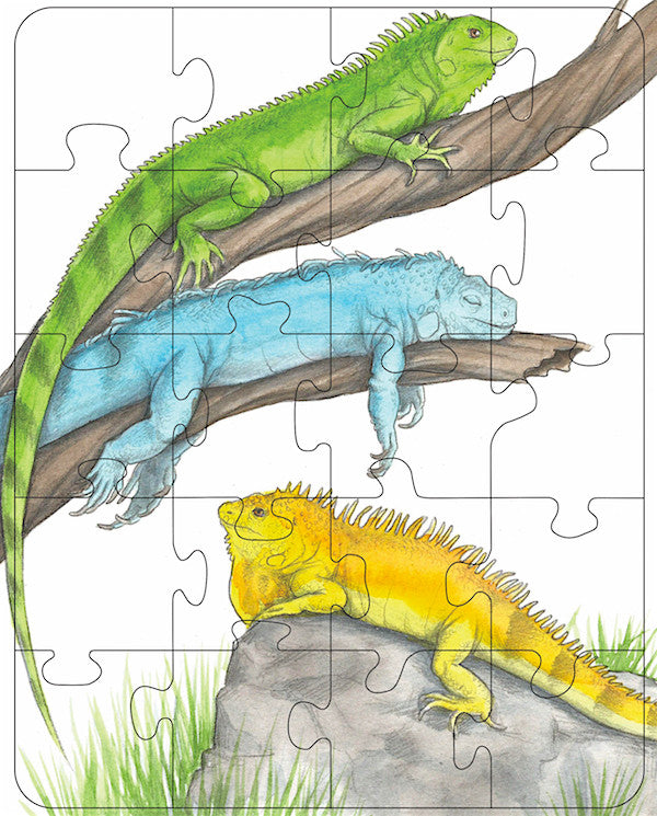 Iguanas Rectangle Puzzle