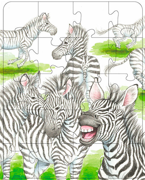Zebra Rectangle Puzzle