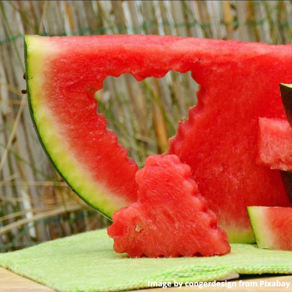 Watermelon slice with heart cut out