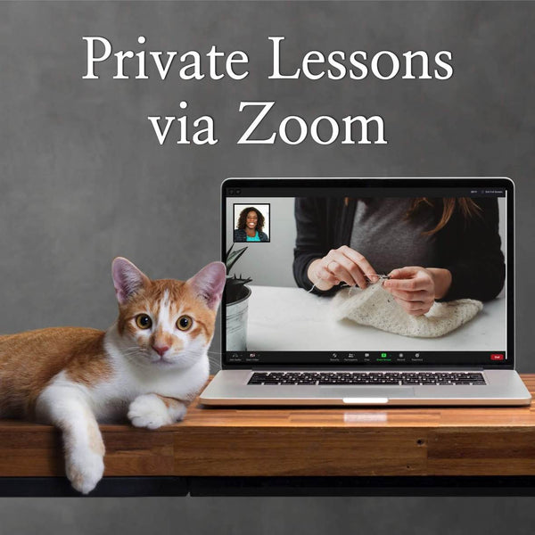 zoom lessons