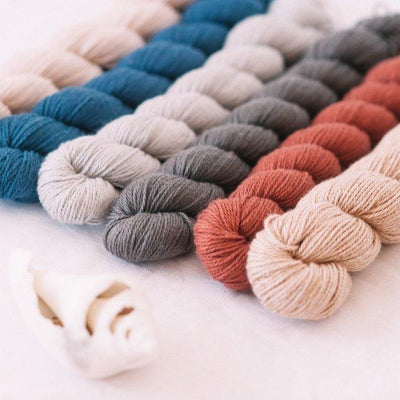| Quince & Co. Willet Yarn | Twisted