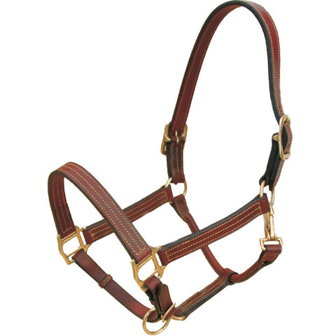 Leather Bromont Halter with Gold Stitching
