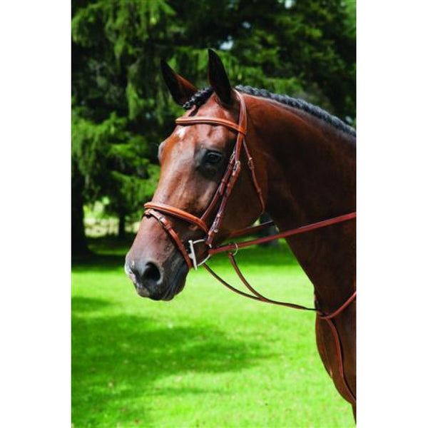 Vespucci Single Crown Fancy Raised Bridle with Flash
