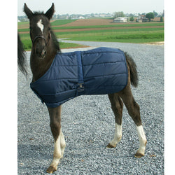 Snuggie Foal Blanket Navy by Intrepid International