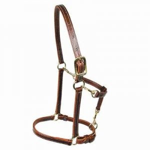 Walsh Convertible 3/4 Wide Halter