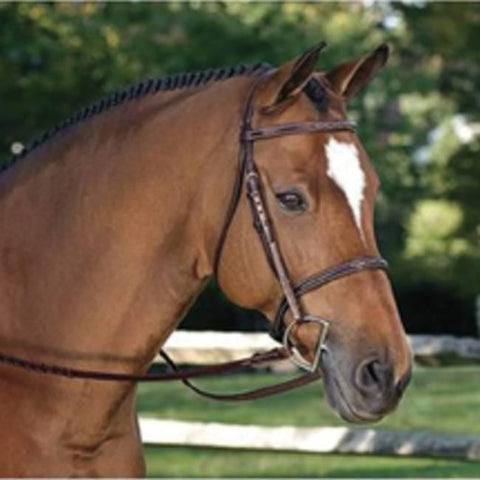 Exselle Mono-Crown Hunter Bridle