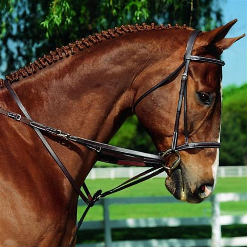 IMPERIAL MARTINGALE REINS SET, BROWN