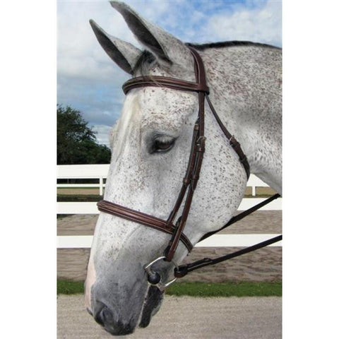 HDR PRO STRESS FREE FANCY PADDED BRIDLE