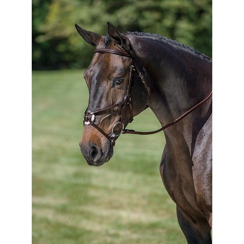 HORSELiFE Jumper Bridle with Rubber Reins