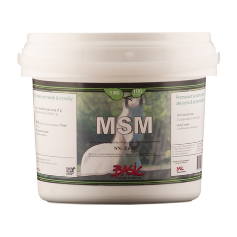 Basic Equine Nutrition MSM Pure 1KG
