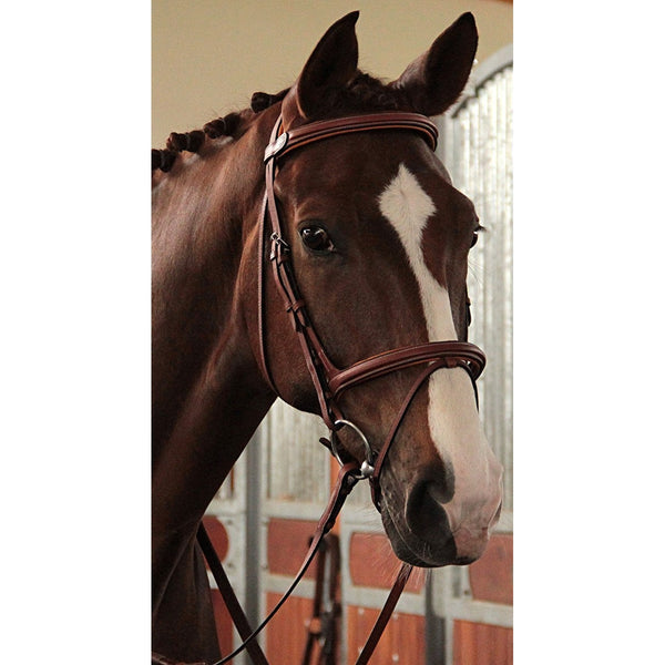 Butet Raised Padded Jumper Bridle with Rubber Reins