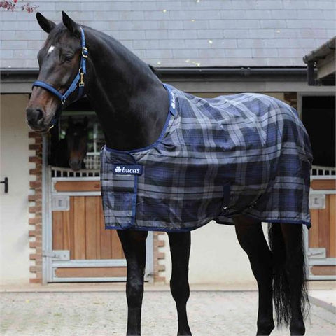 Bucas Celtic Stable Rug Medium