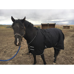 HORSELiFE Original 1200 Denier Ripstop Winter Turnout 220 Grams of Fill with Hood