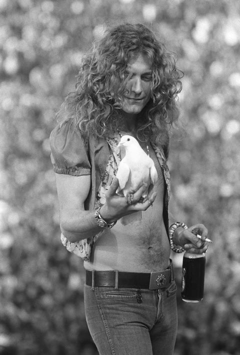Robert Plant, Led Zeppelin, San Francisco, CA, 1973