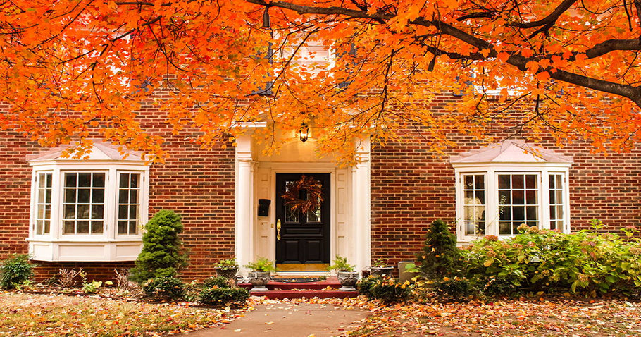 Transition Your Home from Summer to Fall