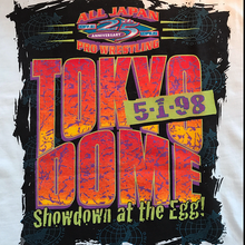 All Japan 25th Anniversary | Tokyo Dome Showdown At The Egg | L