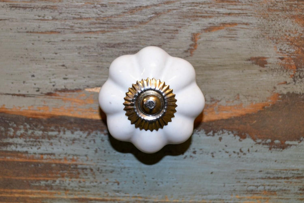 Ceramic Knob | Pumpkin White