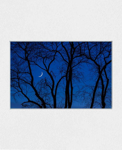 Crescent Moon at Twilight Interchangeable Fabric Art Print Created By Kurt Budliger