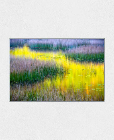 Fall Colors Reflecting In Calm Water Interchangeable Fabric Art Print Created By Kurt Budliger