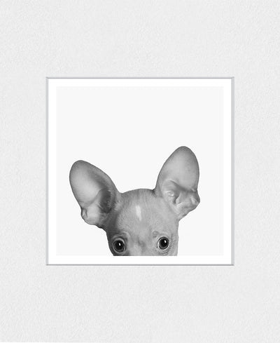 Holy Chihuahua Interchangeable Fabric Art Print Created By Jon Bertelli