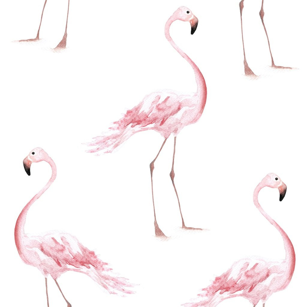 Dekornik Flamingos Wallpaper