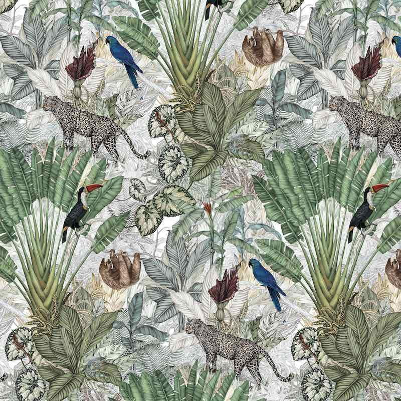Jimmy Cricket Jungle Wallpaper