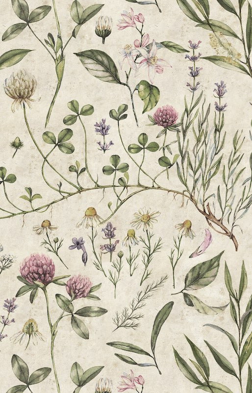 Dekornik Vintage Botanic Illustration Wallpaper