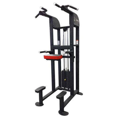 LEGEND FITNESS SelectEdge CHIN DIP ASSIST COMBO - 1122