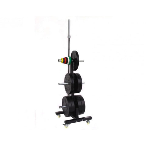 The best olympic bumper plate rack | CFF FIT