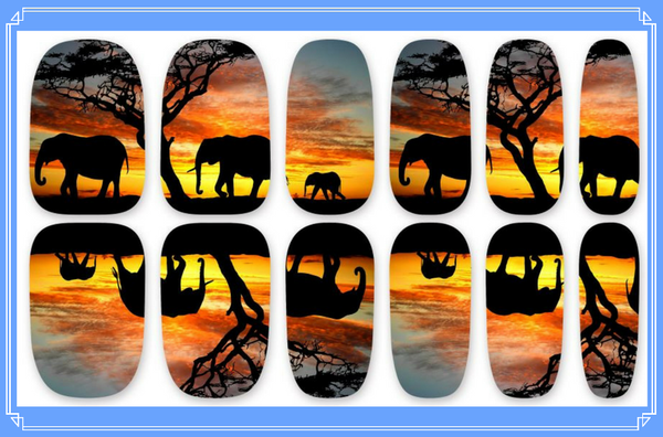 Nail Wraps - Elephant Family in the African sunset.    Please note that depending on the length of your nails part of the design may not show.