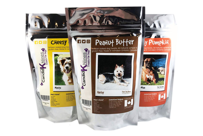 Four Reasons To Give Your Dog Candid K Nines Treats