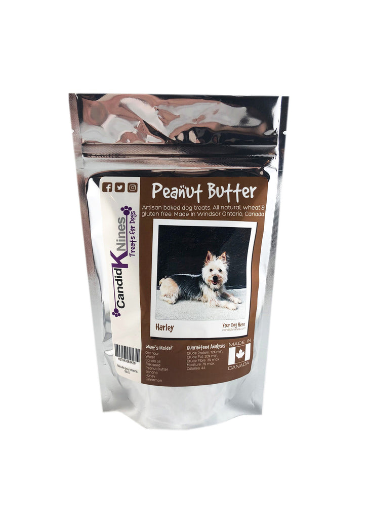 f8f66059610d Peanut Butter Dog Treats
