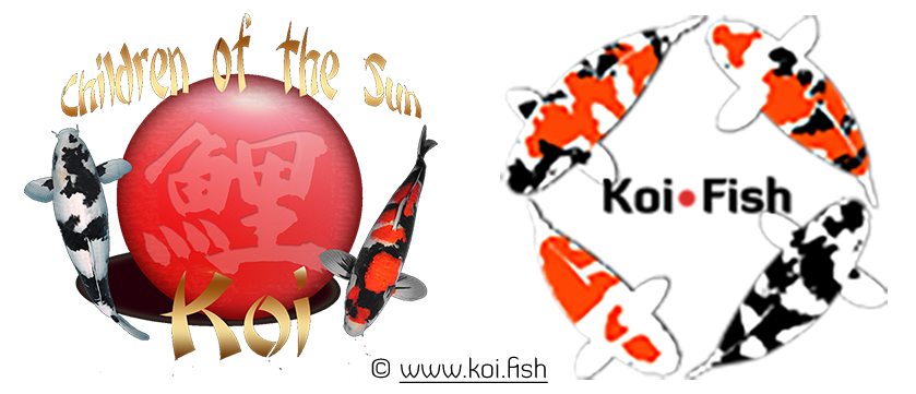 Partnership with Children of the Sun Koi