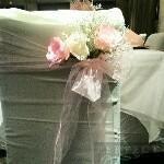 20 Light Pink Organza Chair Sashes