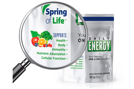 Spring of Life Daily Energy - HIITBURN