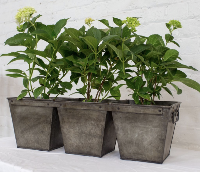 Iron Square 3 Bucket Planter
