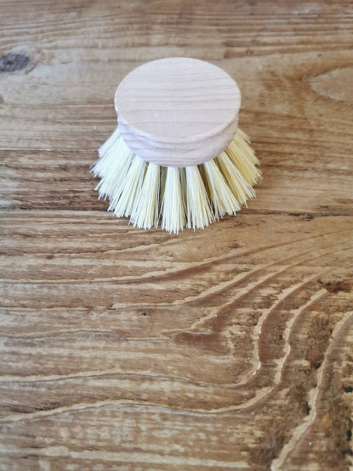 Dishy Replacement Brush Head 40mm LIght