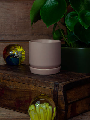 Oslo Planter - Peach - Mini