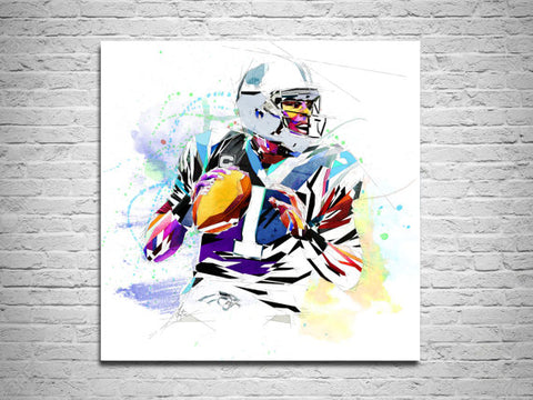 rushing quarterback cam newton