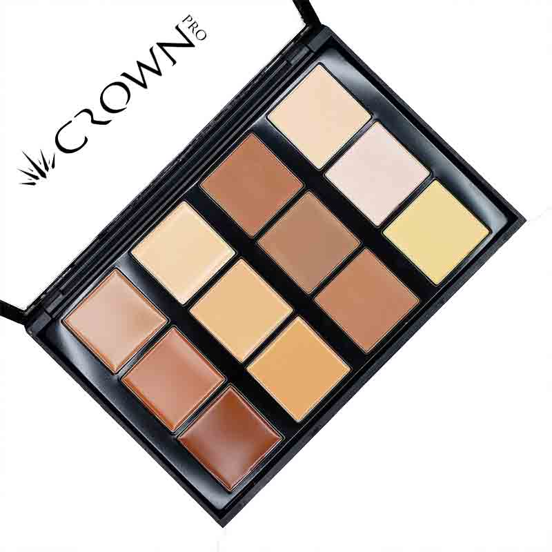 Conceal and Contour CP10 Makeup Palette