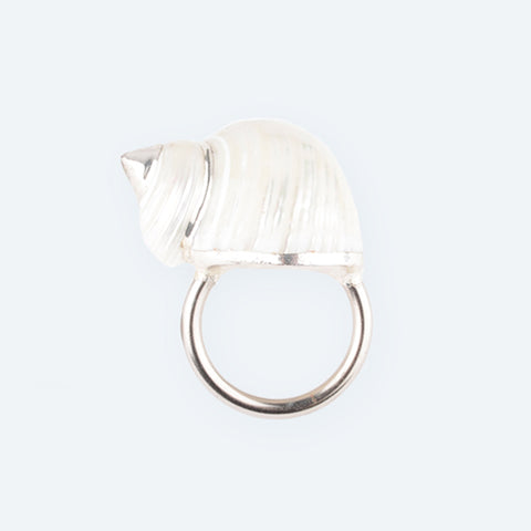 White Cassidae Napkin Ring