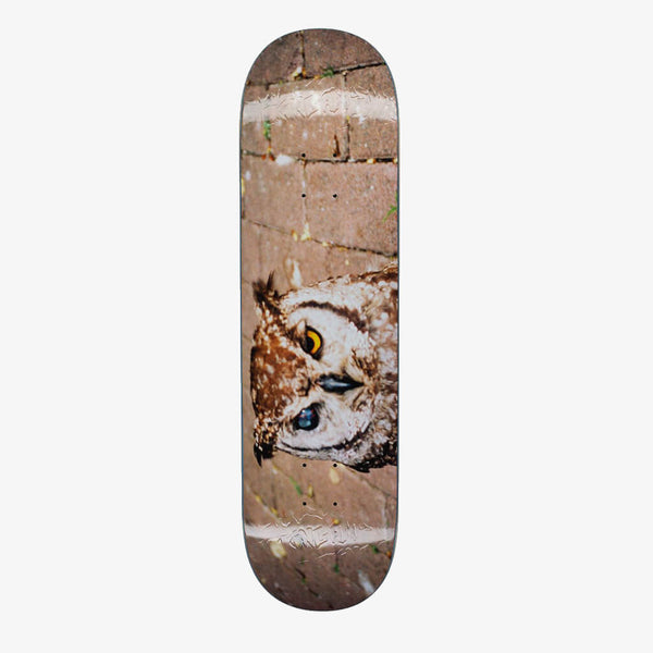 "FA Owl Photo Jason Dill 8.38"" Deck"