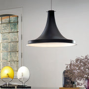 Designer pendant light with coloured cable and any  RAL colour