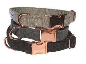 The Bailey Collar
