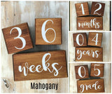Large Baby Milestone Blocks